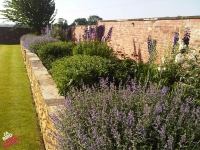 Reclaimed Brick and York Stone Walling